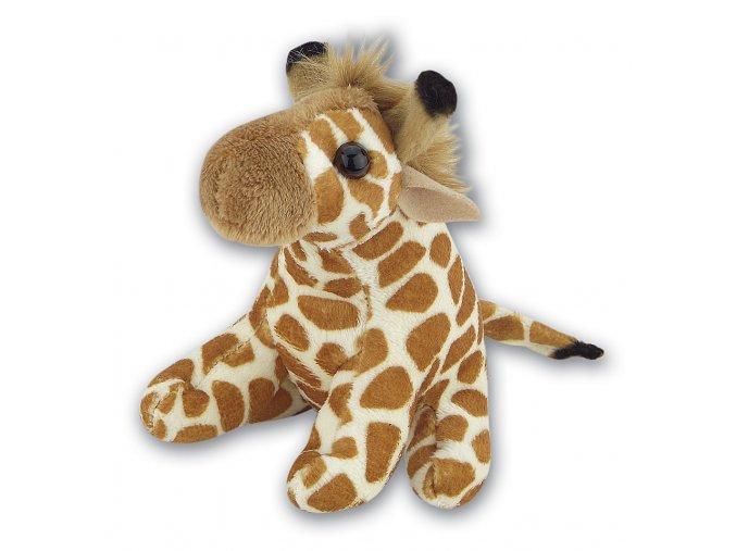 K111 Giraffe