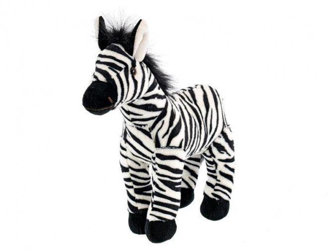 EB0E279B C579 45D0 B64B 7F48952252C1 zebra plys m93770