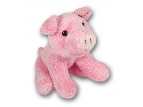 MS999 Pig