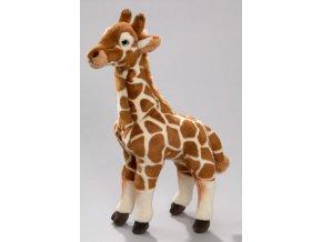 Plüss zsiráf 40 cm - plüss játékok