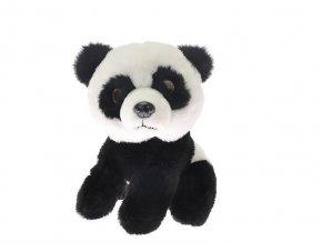 B2D281CD 9C5A 4D49 94D3 AA0B21DCE21B panda plys m660184