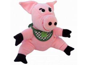 2303 pig 1466154041