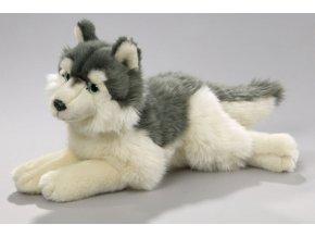 Plüss kutya - husky 35 cm