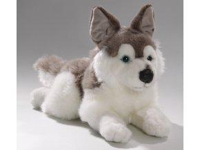 Plüss kutya - husky 34 cm