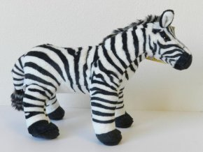 91C91C0D 3ADA 4D79 823D 7AAB1BAEBE49 zebra plys b600814