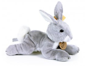 králík2