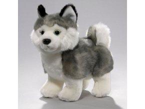 Plüss kutya - husky 27 cm