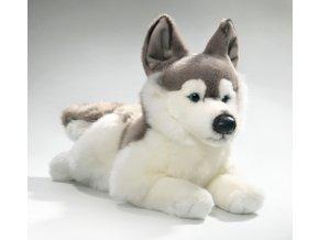 Plüss kutya - husky 42 cm