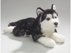 Plüss kutya husky 35 cm