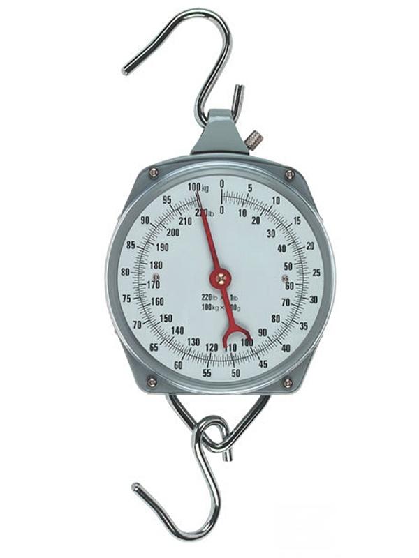 Nespecifikovano Levná závěsná váha - mechanický mincíř do 100 kg