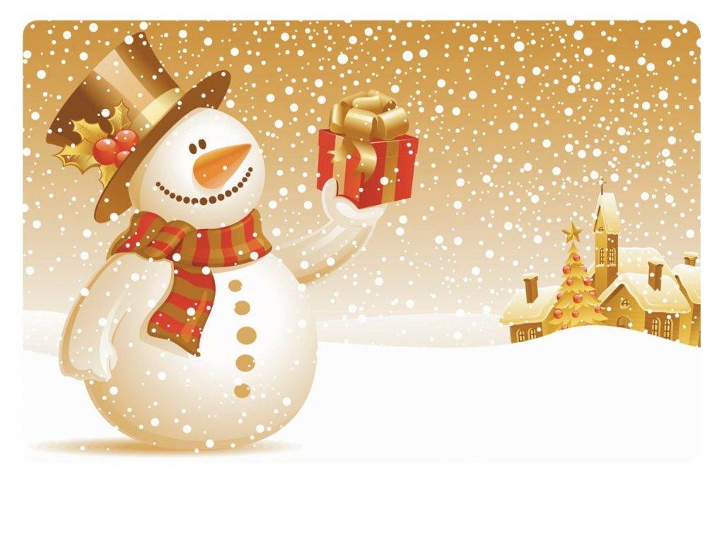 Prostírání vánoční 43x28 cm plast