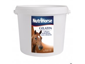 Screenshot 2019 08 15 NutriHorse Gelatin (Gel)