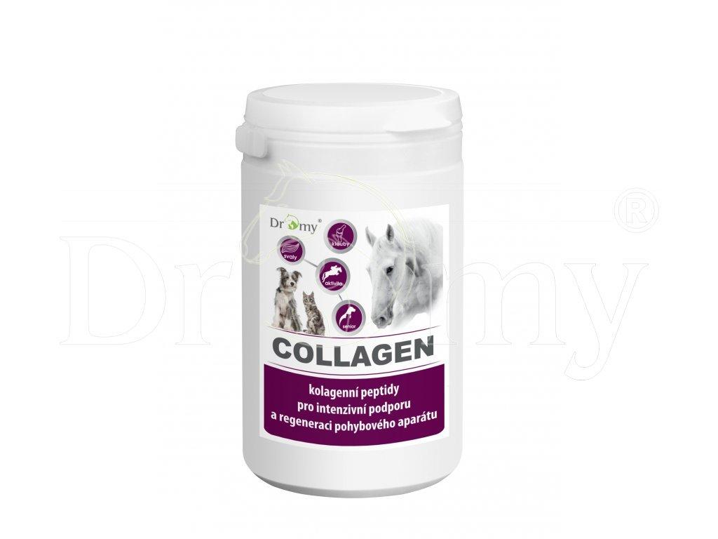 264 1 collagenn
