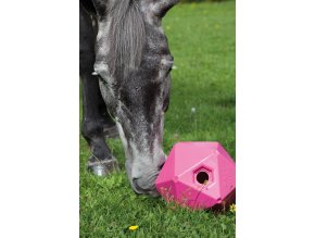 Balón na krmivo hranatý růžový Shires  Míče pro koně
