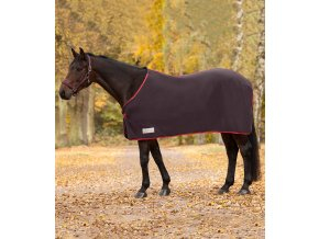 640 odpocovaci deka fleecova economic waldhausen toffee 105cm