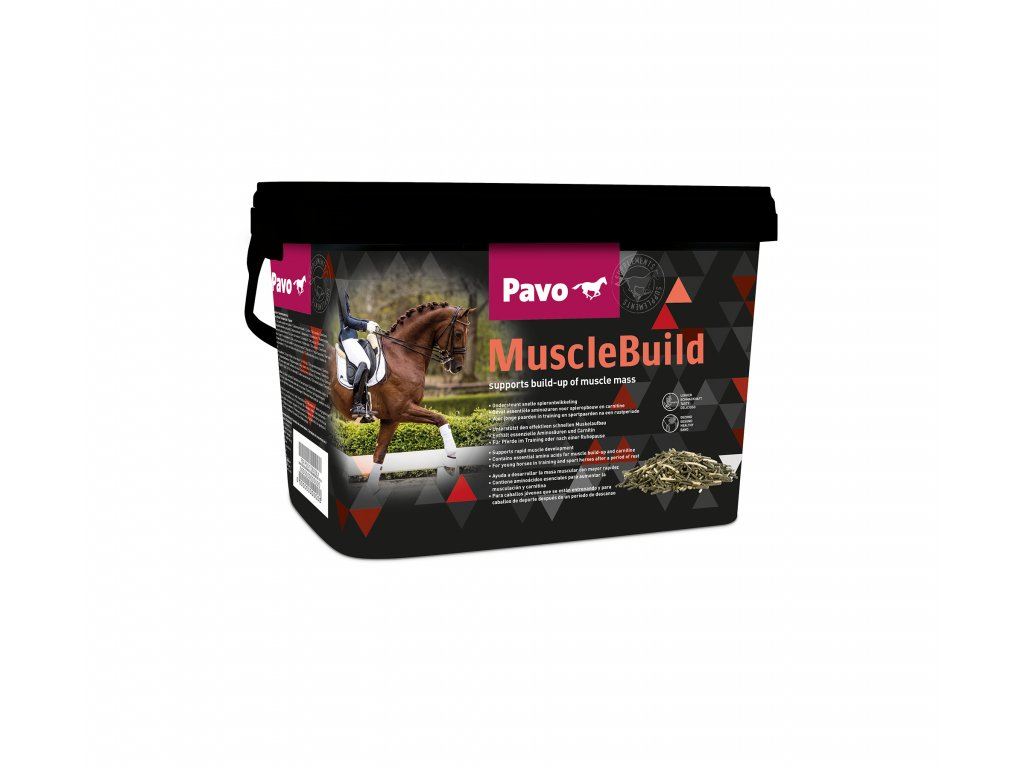 MuscleBuild links new