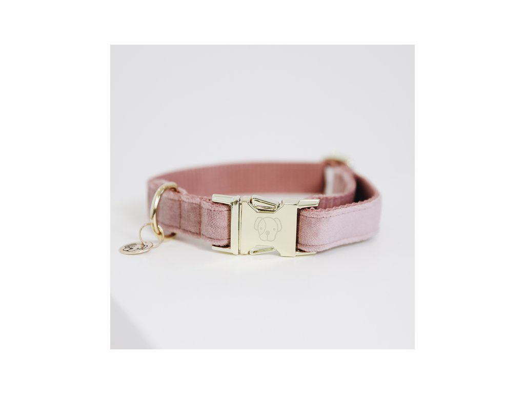 kentucky dogwear dog collars leads dog collar velvet old rose 1 a929523bbdd099ba1a676b6771a9e673 article photobook m