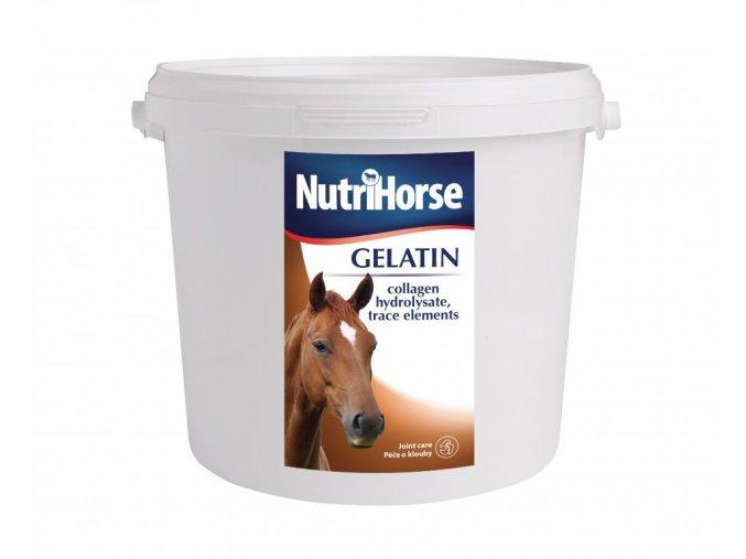 NutriHorse GELATIN