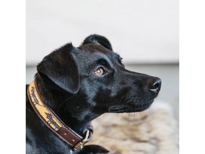 DOG COLLAR HANDMADE PEARLS