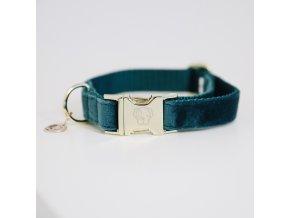 kentucky dogwear dog collars leads dog collar velvet emerald a929523bbdd099ba1a676b6771a9e673 article photobook m
