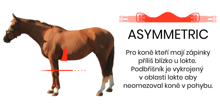 asymetric22