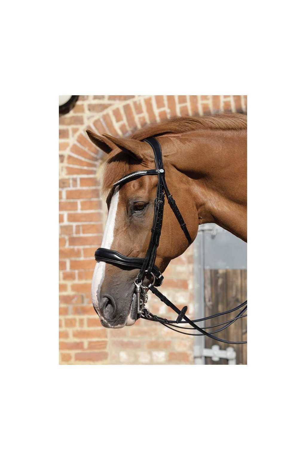 SS19 Abriano Anatomic Double Bridle with Crank Noseband Close Up Full Bridle