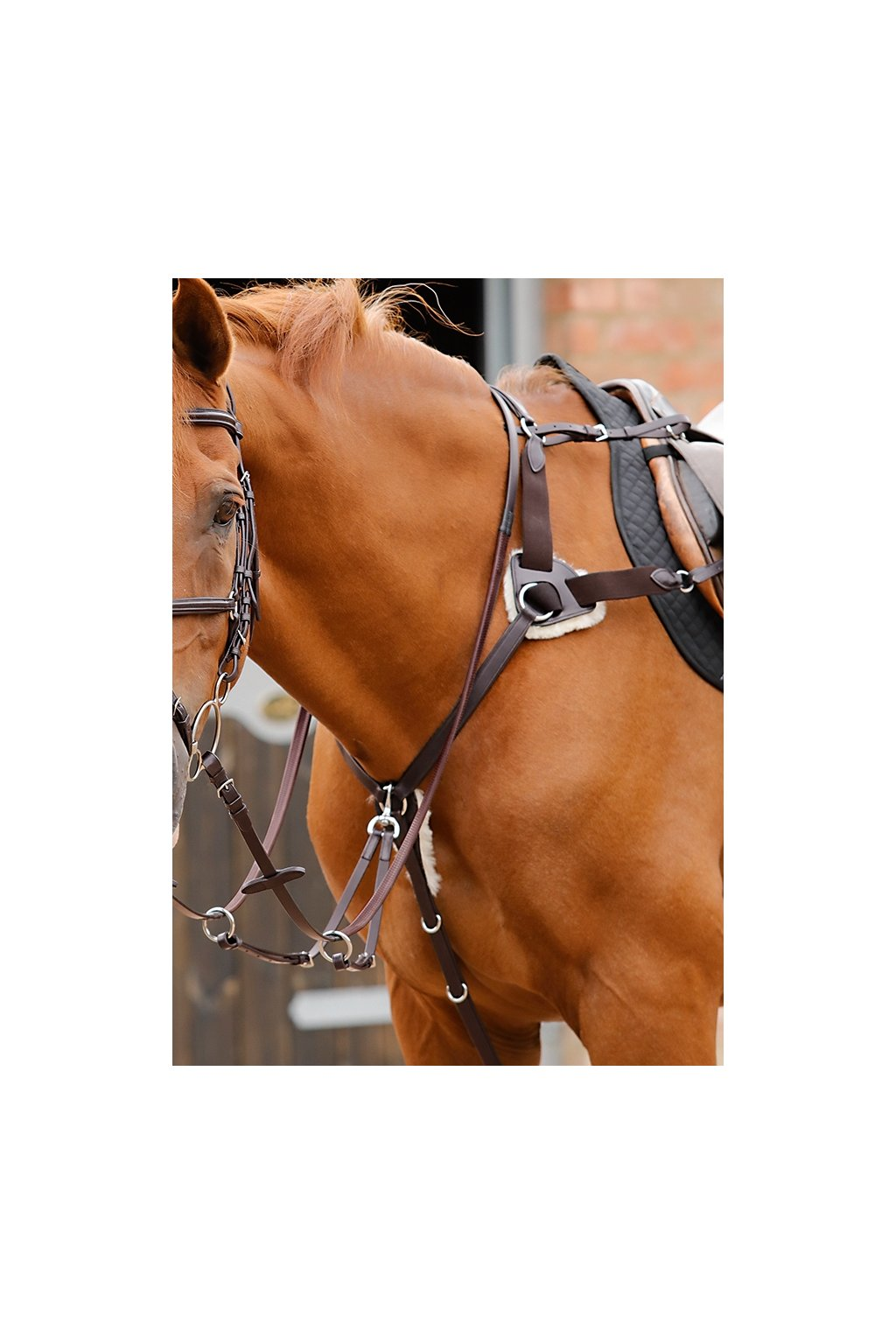 Invorio 5 Point Breastplate Brown Horse Webx900