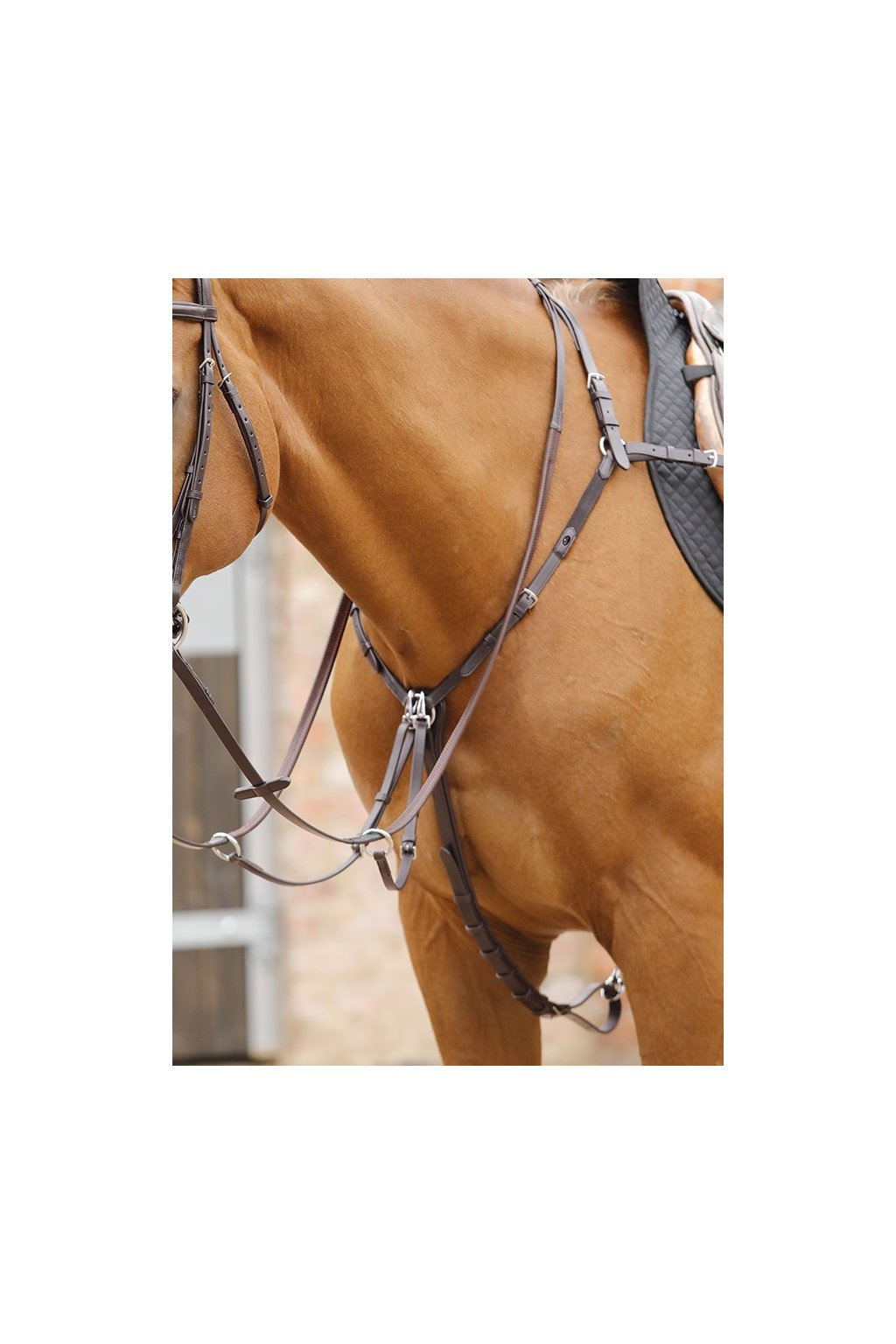 Valbrona Performance Breastplate Brown RGB x900