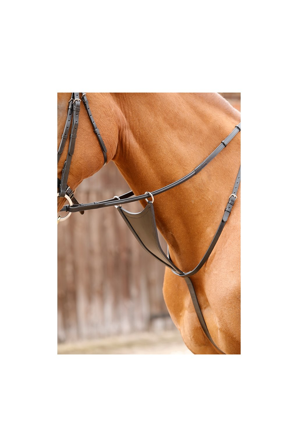Martingal Rosello Premier Equine
