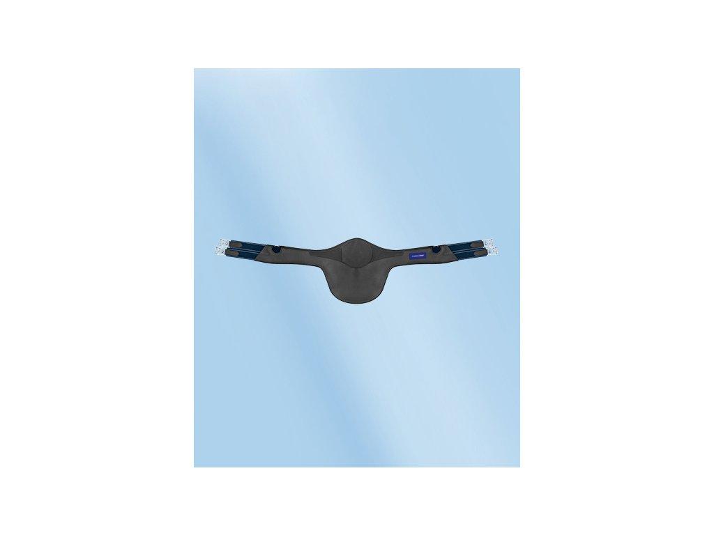 078 PB SatGur Protect sch 468x573