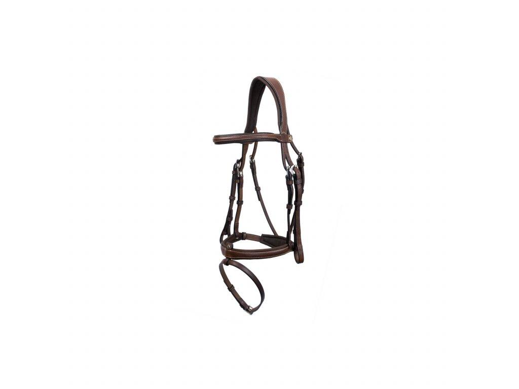 flash noseband bridle
