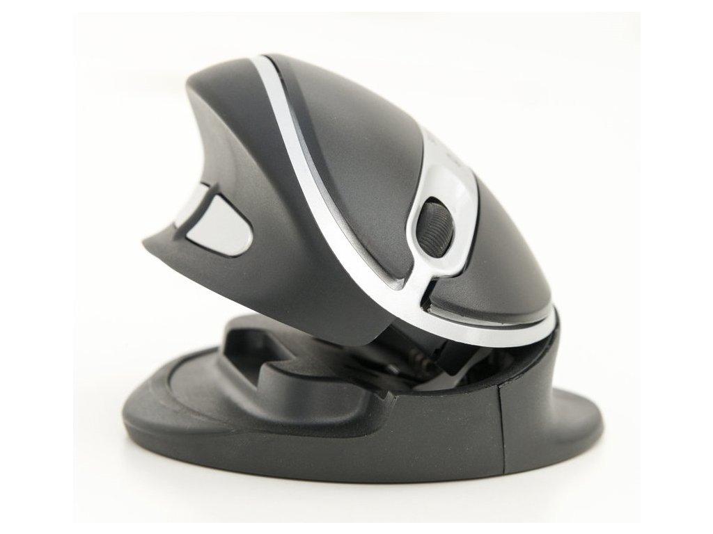 Oyster Wired mouse MEDIUM black (BNEOYM)