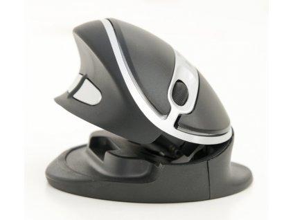 Oyster Wireless mouse MEDIUM black (BNEOYMW)