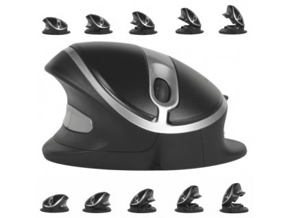 Oyster Wired mouse LARGE black (BNEOYML)