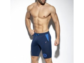 sp248 fit flag shorts (6)