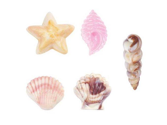 Mořské plody forma na čokoládu 2115-1561