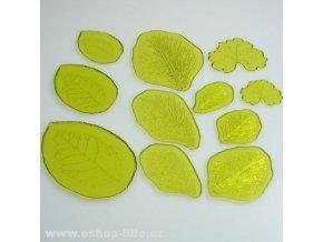 Sada listů se žilkováním 1 JEM 103FF042