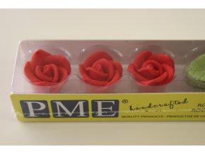Červené růže s lístky PM142R