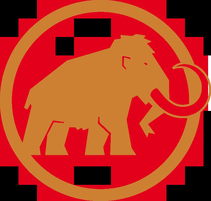 Bronzový zákazník Mammut
