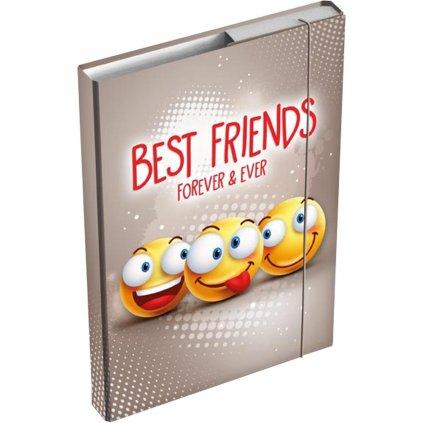 Školní box A4 Smile  8020896