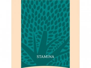 Essential Stamina 12kg