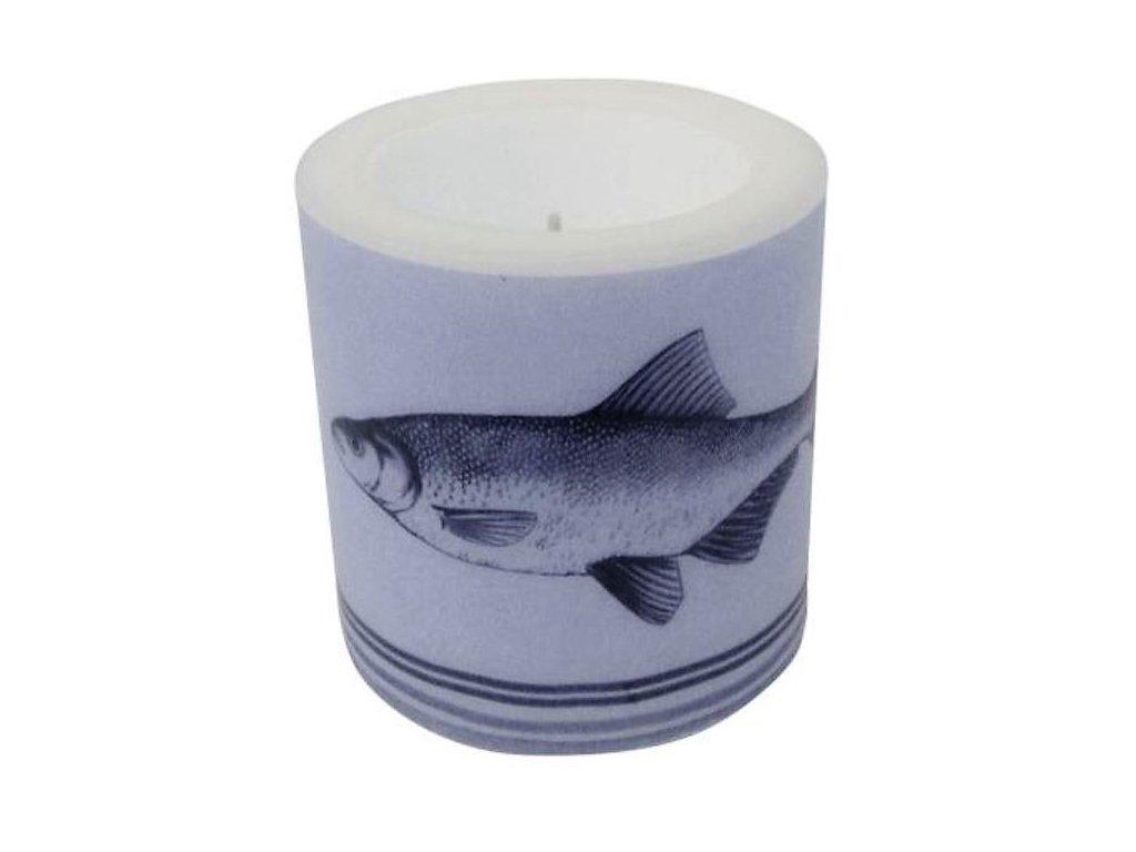 Lampionová svíčka - ryba
