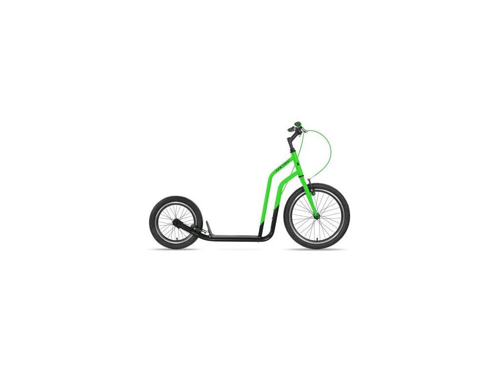 thb trifid 2020 green