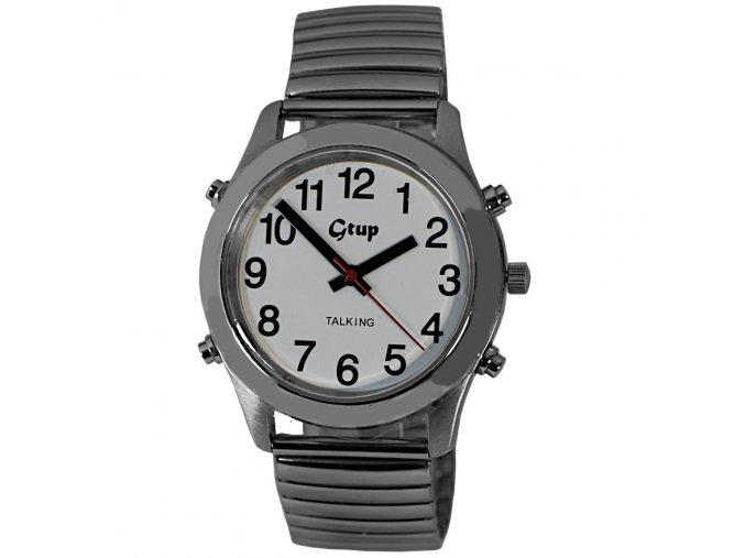 hodinky pro nevidome cesky mluvici hlasem gtup 1030