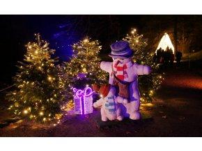 pillnitz christmas garden vanoce 20191202 7 galerie 980