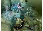 Imunita - přirozená obranyschopnost