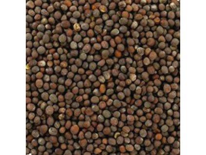 Hořčičné semínko černé (tmavé) BIO, Ecce Vita 100g