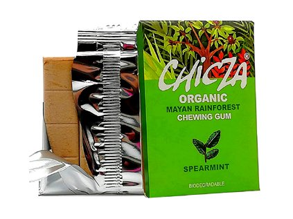 Žvýkačka Spearmint s Maou kadeřavou BIO Chicza