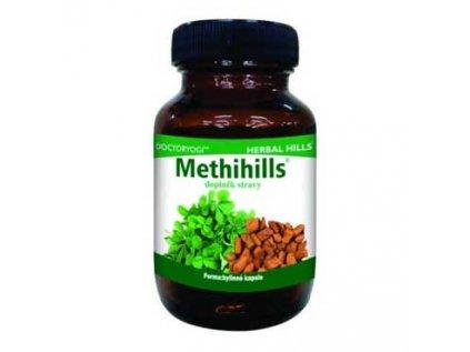Methihills - Pískavice (Řecké seno) při zánětu, cukr, cholesterol, hormony 60cps.
