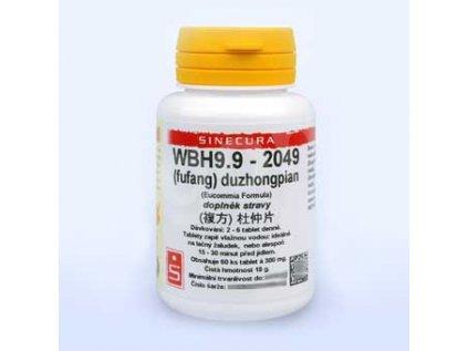 WBH9.9 - duzhongpian - pian/tablety